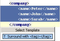 IntelliJ IDEA 包装标签(Tag)