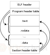 ELF格式结构