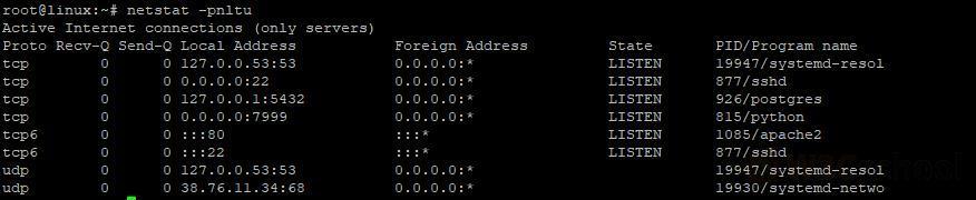 Netstat 命令